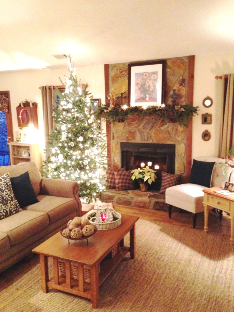 Christmas Decor - 2015 (8)