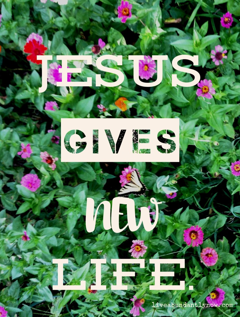 Jesus Gives New Life